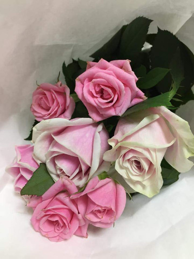 received_739875639451515.jpg